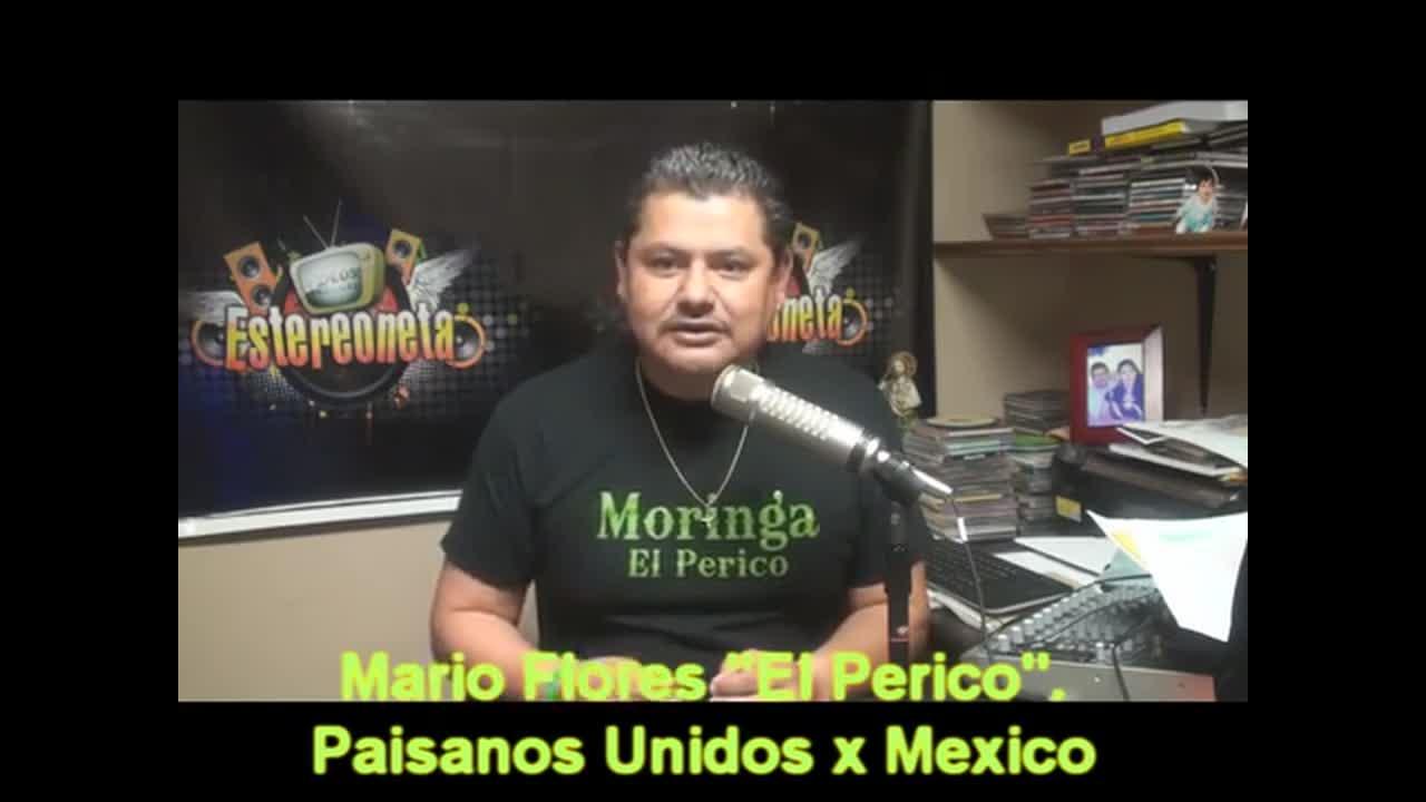 Soluciones A La Violencia En México El Perico Truvoz